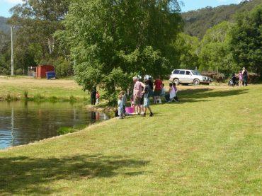 Fishing at Mountain Stream Fishery - Tasmania